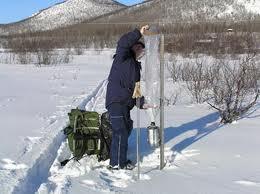 Miljöövervakning - fjäll